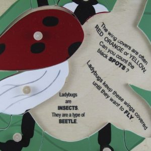 Ladybug red with words