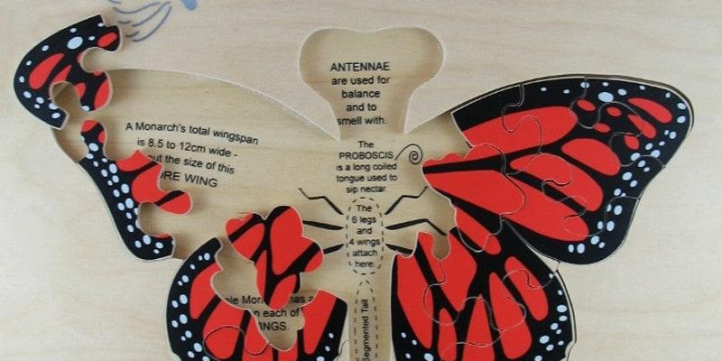 monarch-25-pieces-detail-2-768×1024