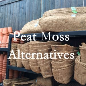 What are Environmentally Friendly Peat Alternatives?