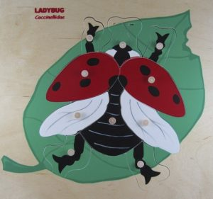 Red ladybug wooden puzzle.