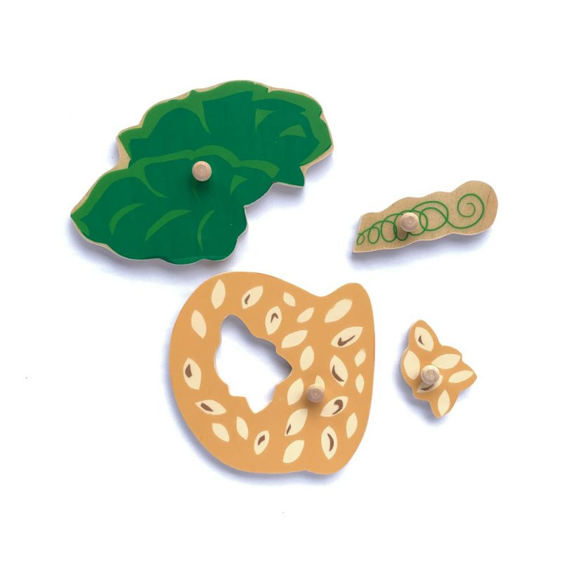 Wooden pumpkin puzzle leaves and seeds pieces.