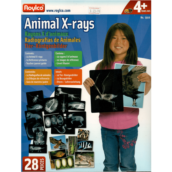 Roylco animal x-rays kit package front.