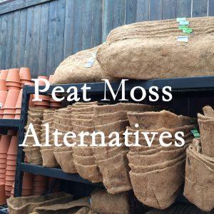 Ecofriendly peat moss alternatives.