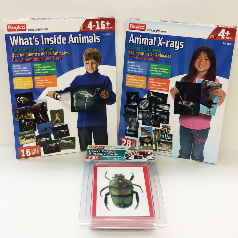 Animal x-rays bundle pack
