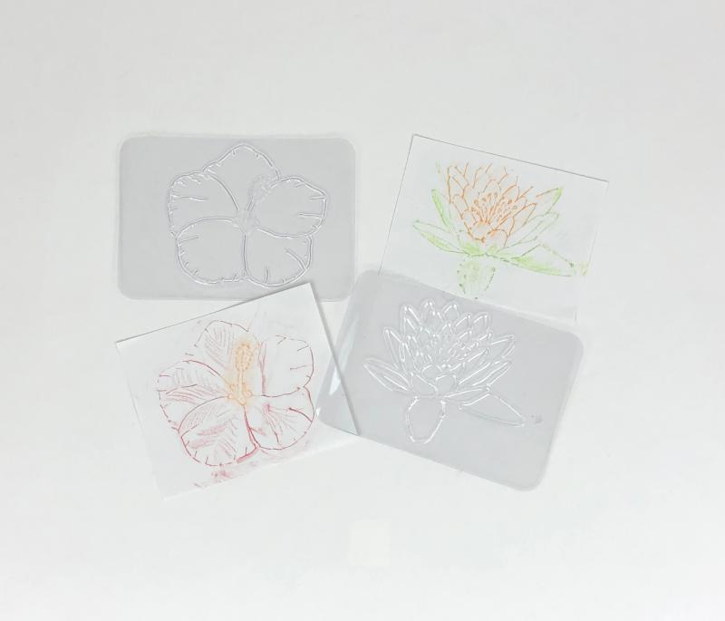 Flower rubbing plates for 16 common flower varieties.
