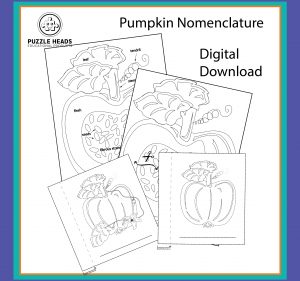 Pumpkin digital files web image.