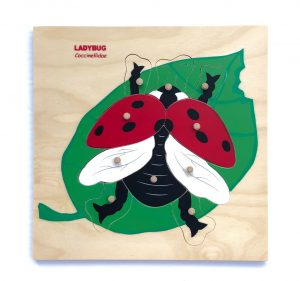 Wooden red ladybug puzzle.