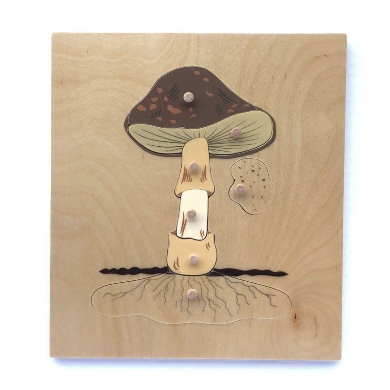 Wooden mushroom puzzle.