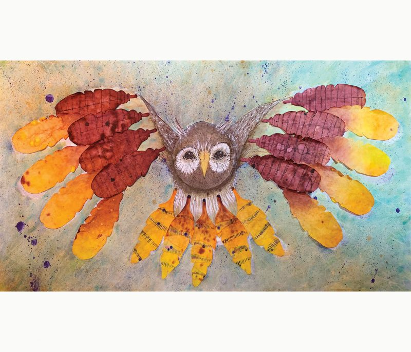Color diffusing paper feathers owl.