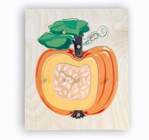 Montessori pumpkin nomenclature puzzle.