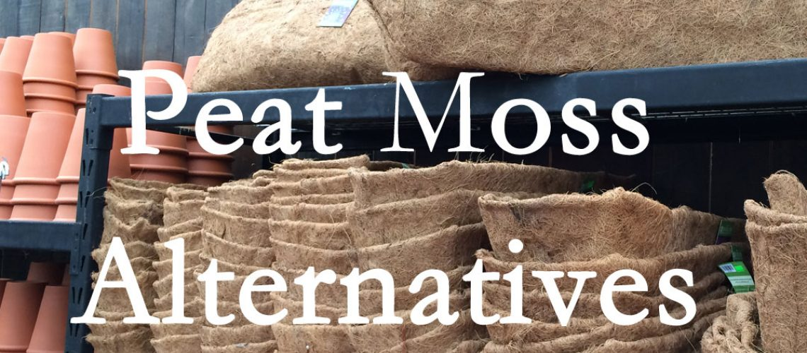 Ecofriendly peat moss alternatives.